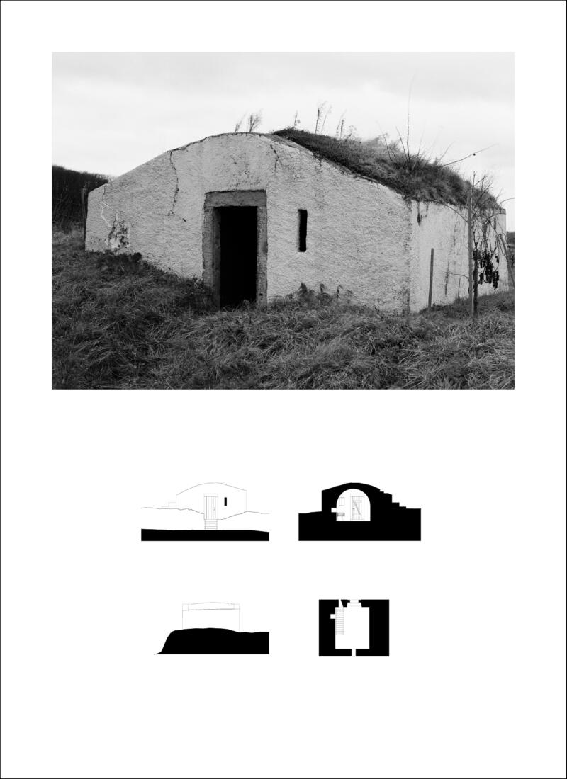 709-Publikation-Spekulationen-Bogen2